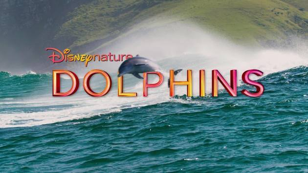 Trailer Parks For Sale >> Dolphin - Official Trailer | Disneynature | Disney Video