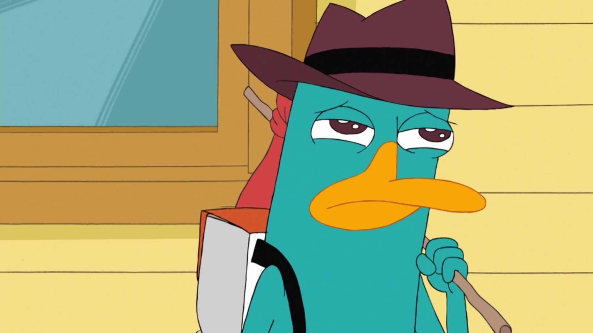 Phineas & Ferb - Perry moet weg