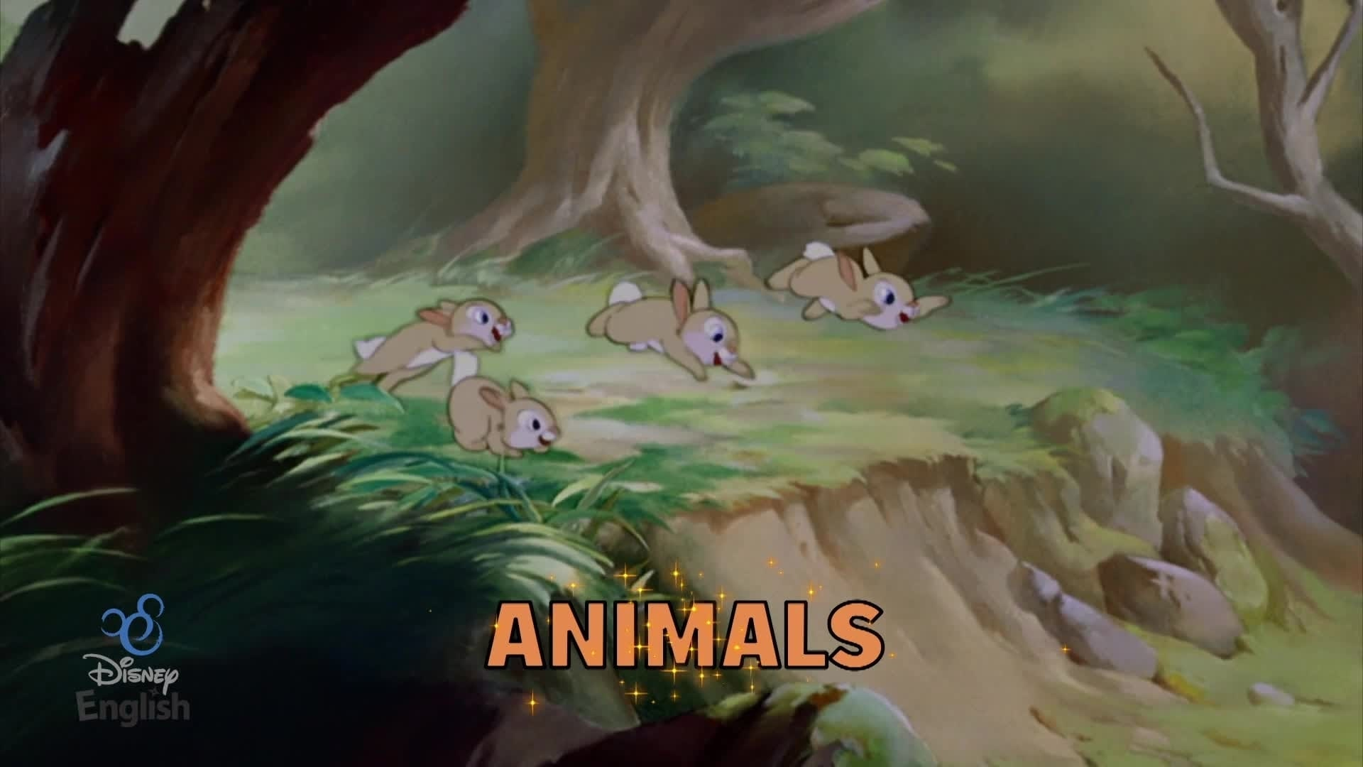 Chansons Disney English - My Favorite Animal