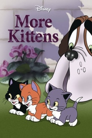 More Kittens