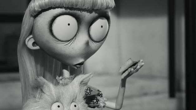 Mr. Whiskers' Dream