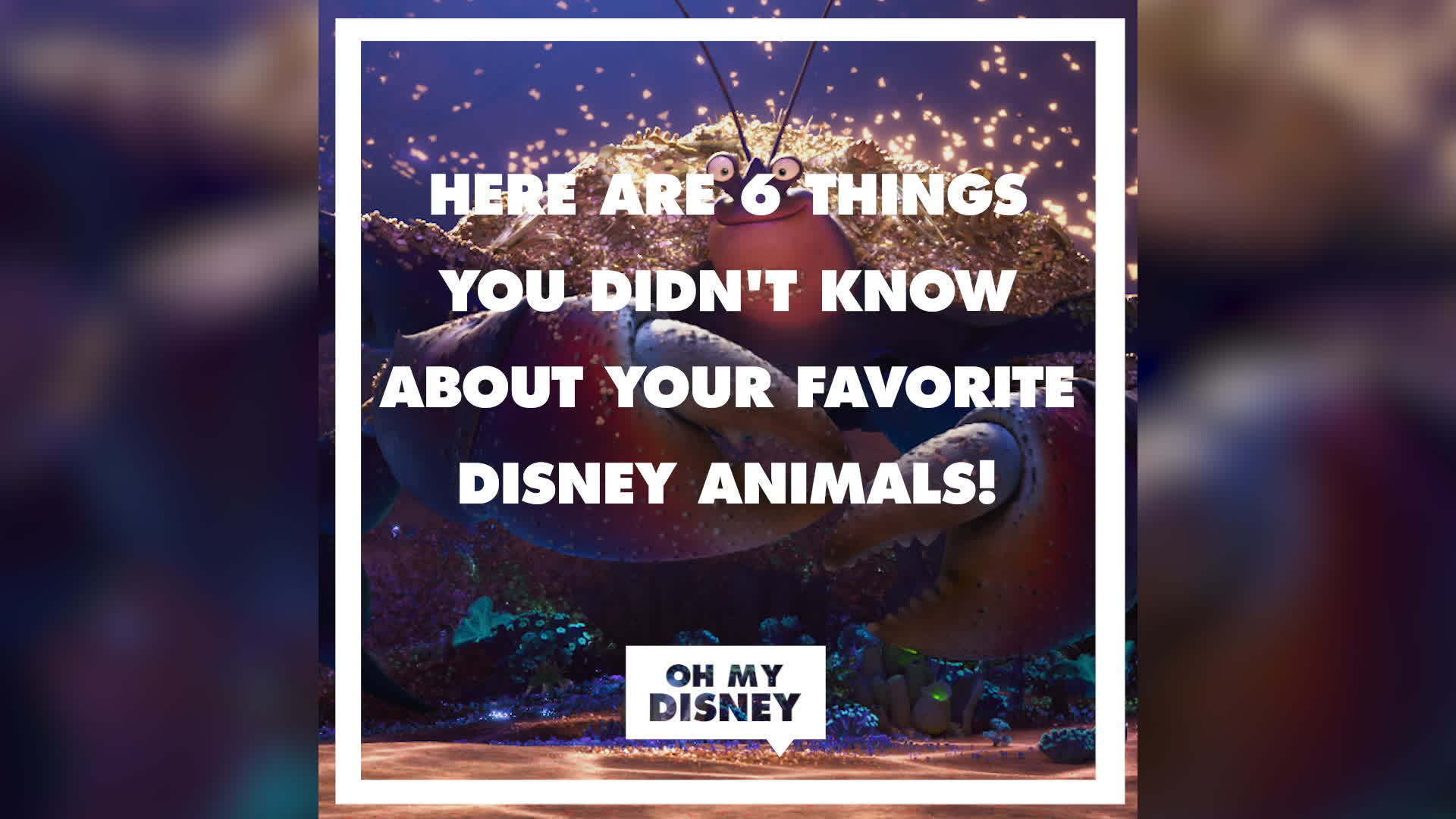 7 Things You Didn't Know About Your Favorite Disney Animals | Oh My Disney