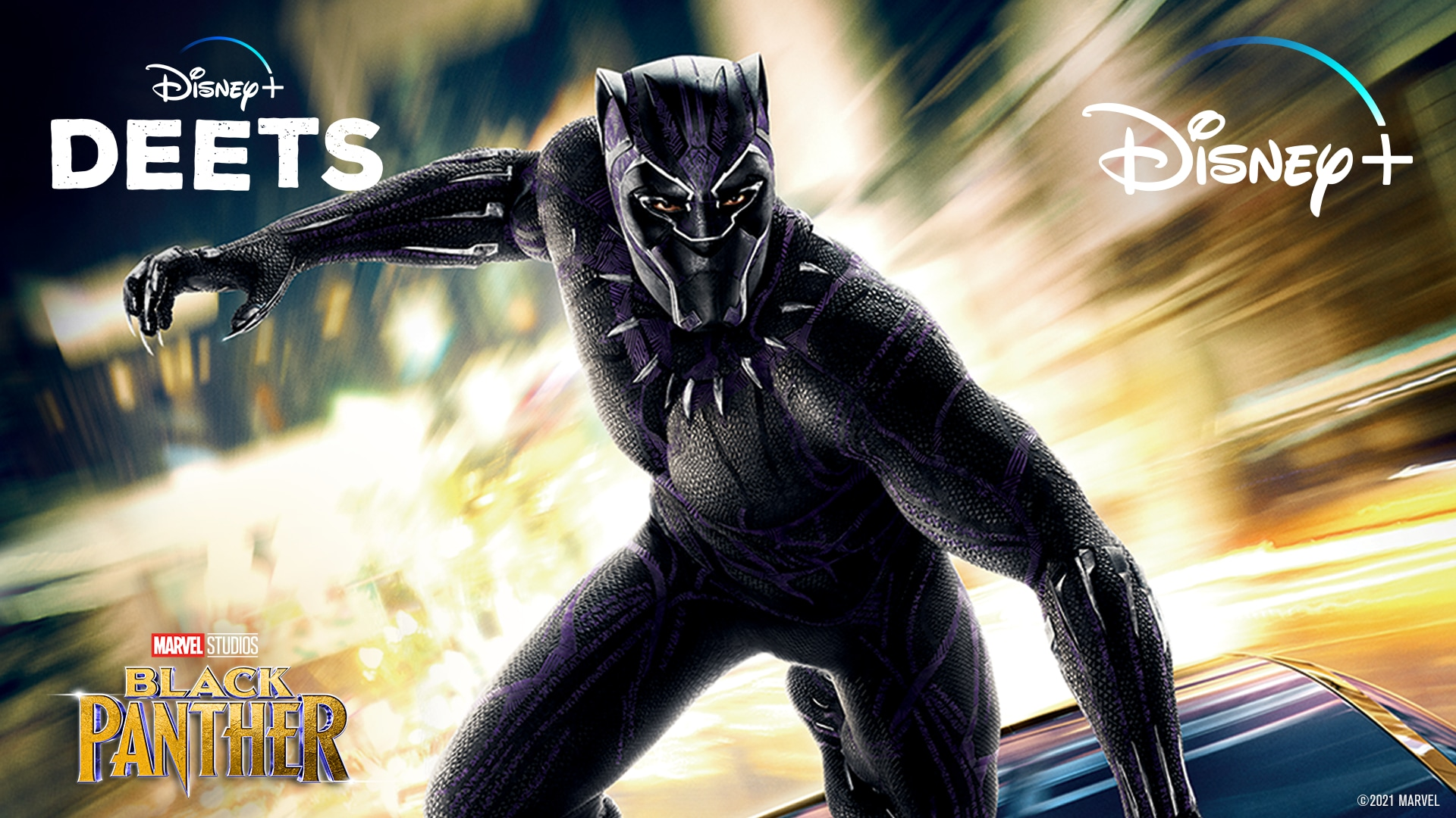 Marvel Studios' Black Panther | All the Facts | Disney+ Deets