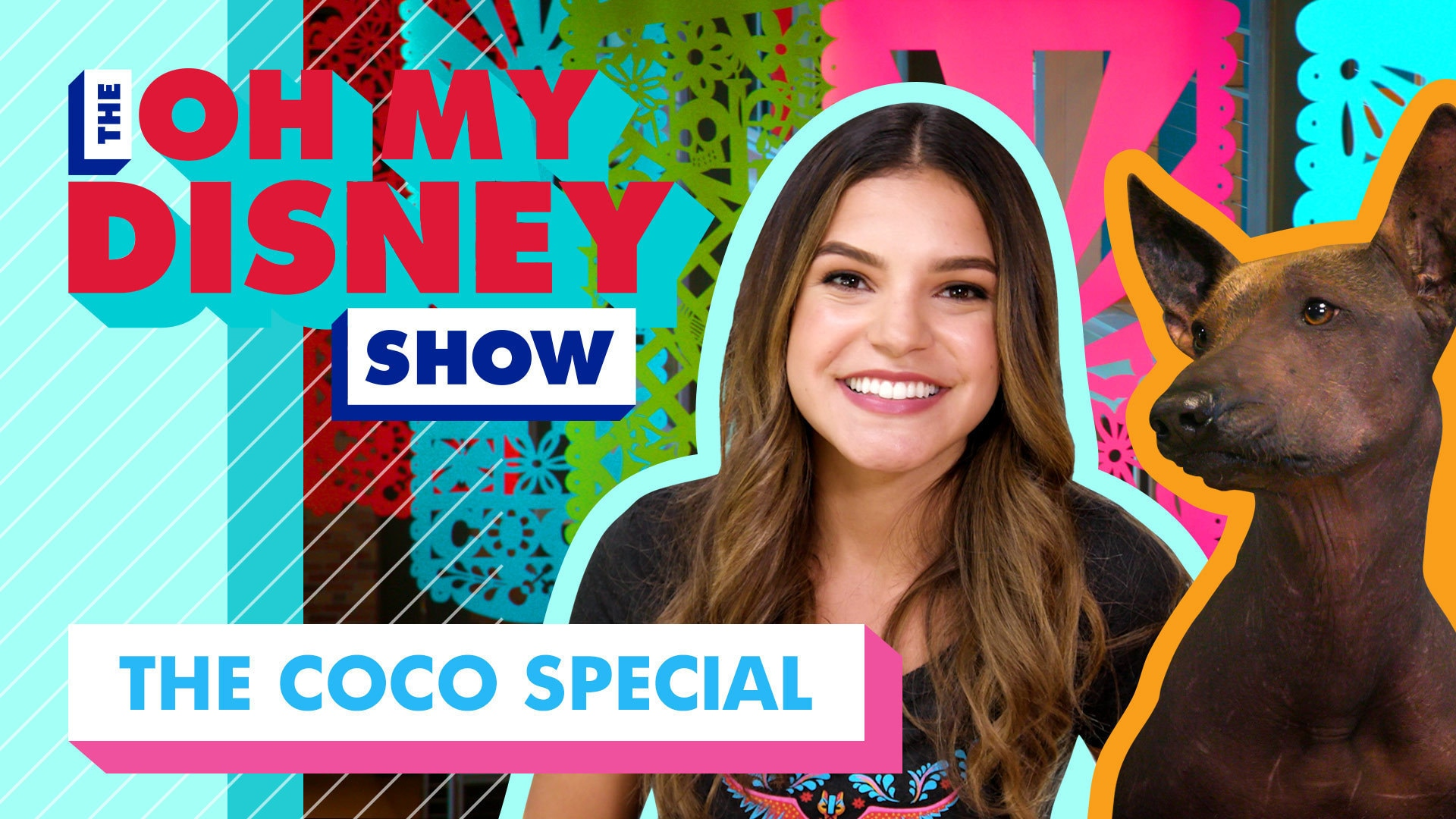 Everything You Need to Know Before You See Coco   Oh My Disney Show