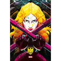 Marvel's Agents of S.H.I.E.L.D. ''One Door Closes'' Print - Limited Edition
