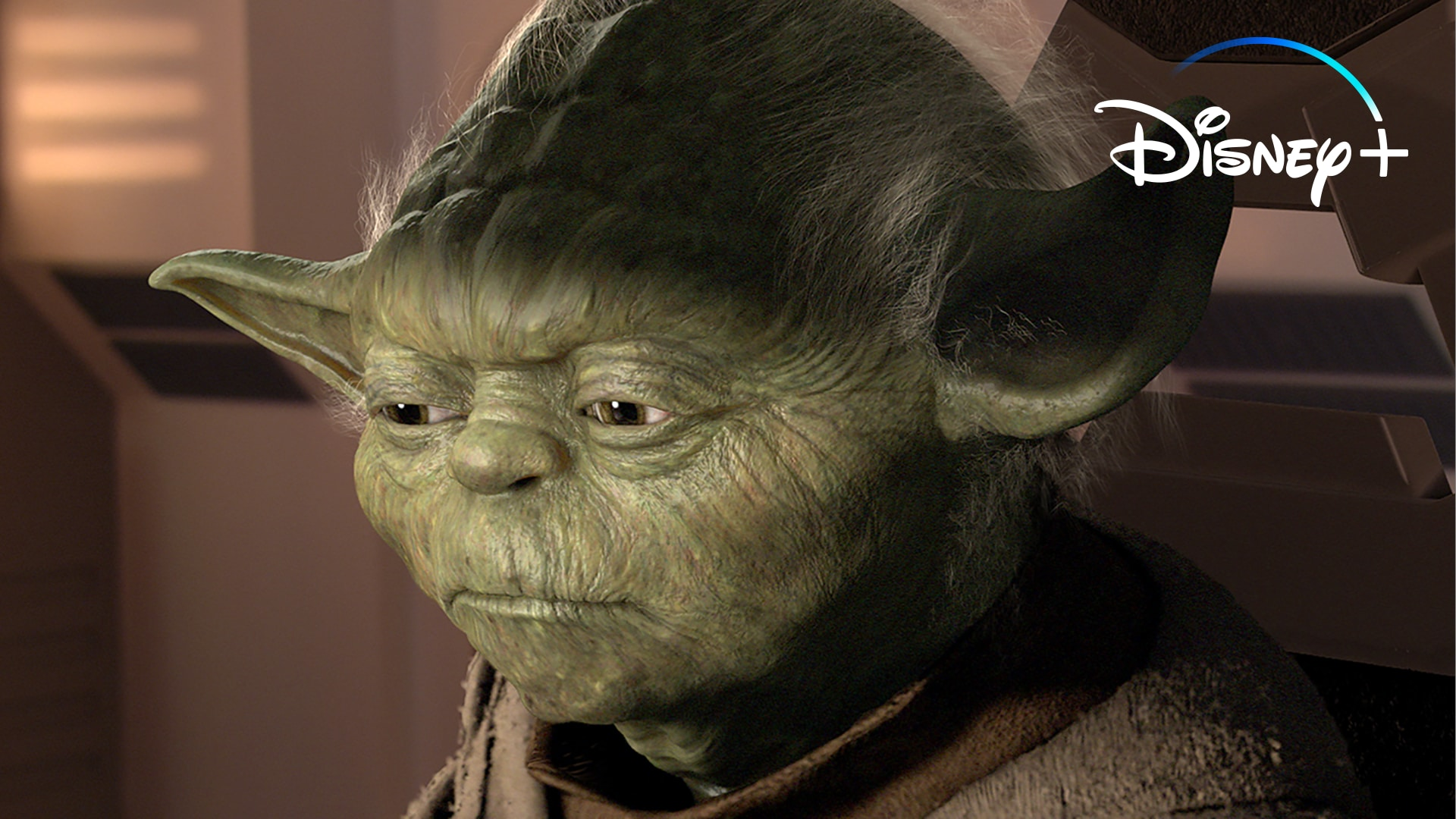 Yoda Tells It Like It Is | Disney+