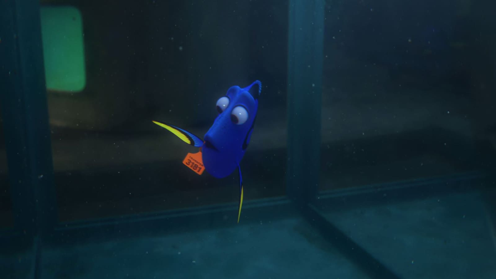 Finding Dory - Short Term Memory Loss