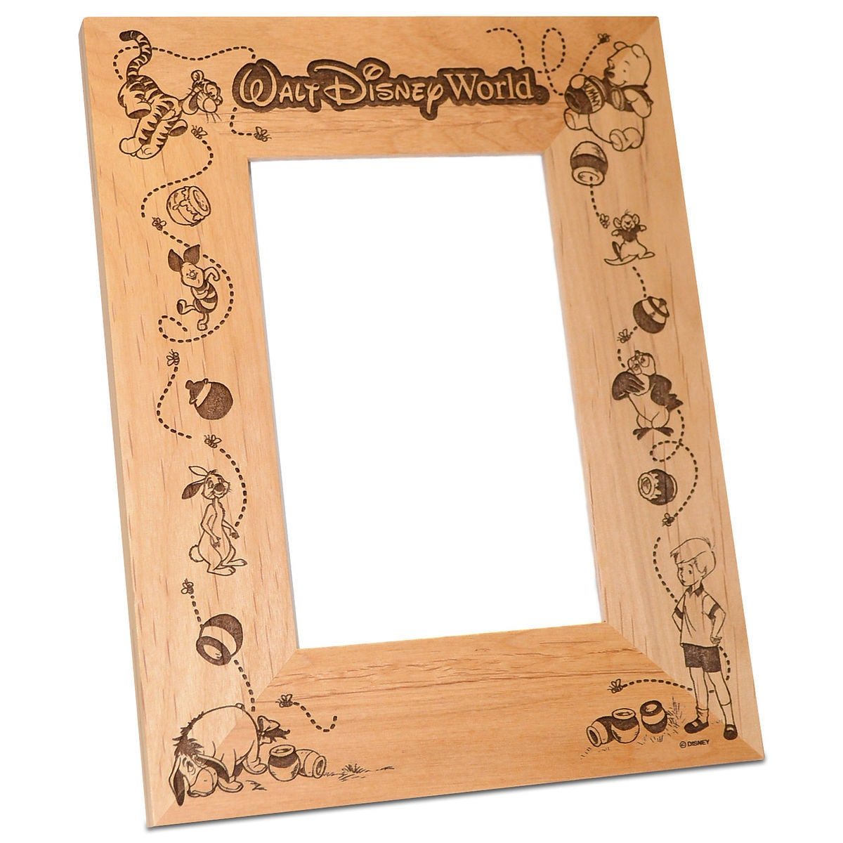 Walt Disney World Winnie The Pooh Photo Frame By Arribas