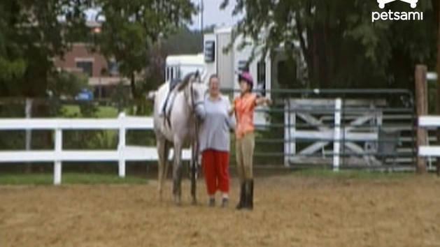 Horse Rider Splashdown