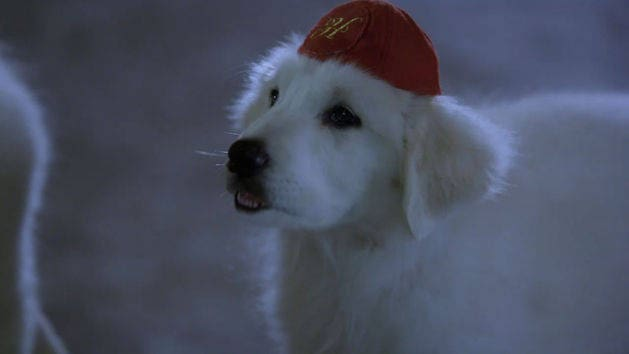 Santa Paws 2: The Santa Pups: Just Haven't Met You Yet