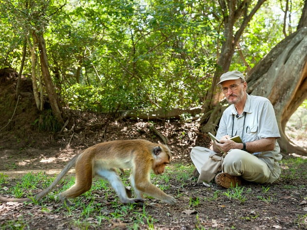 Wolfgang has been studying the macaque monkeys of Sri Lanka for nearly 50 years. His and Jane Goo...