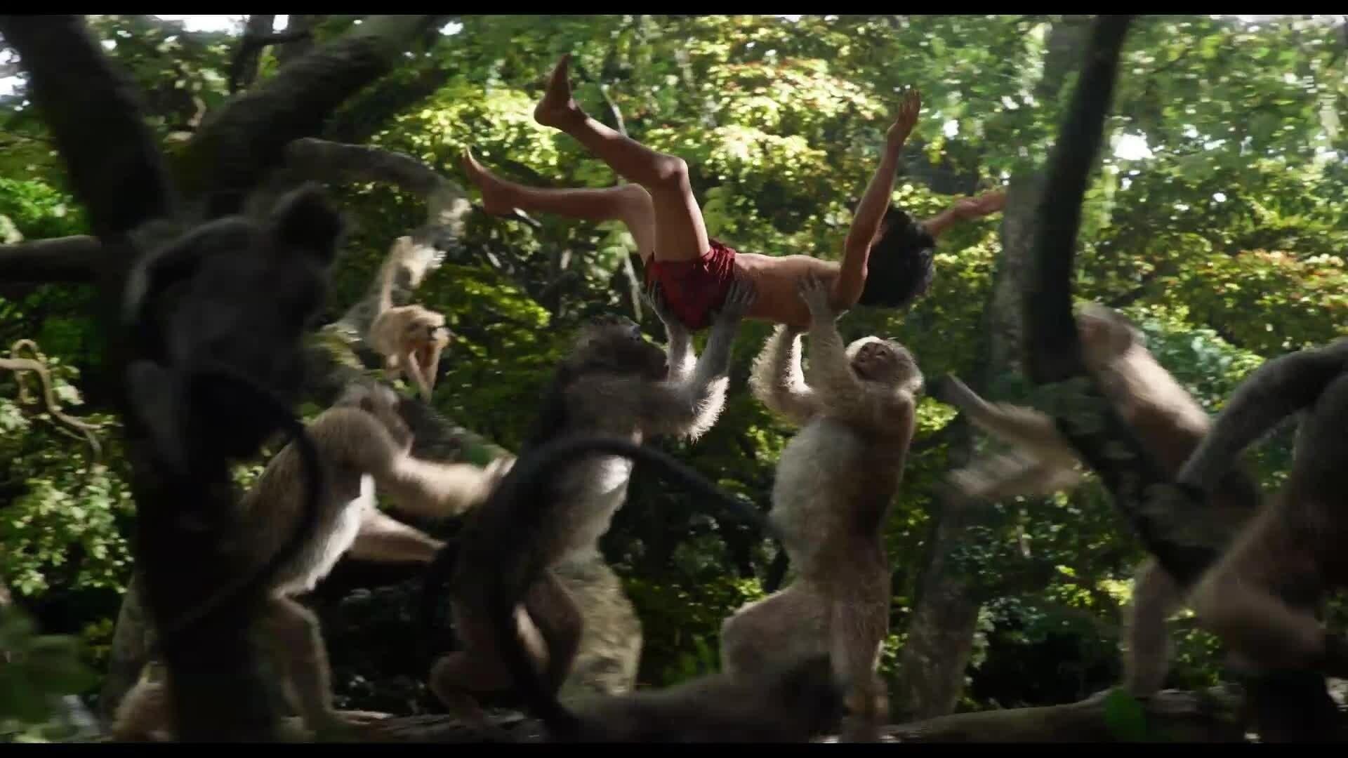 El libro de la Selva - Comentarios del director