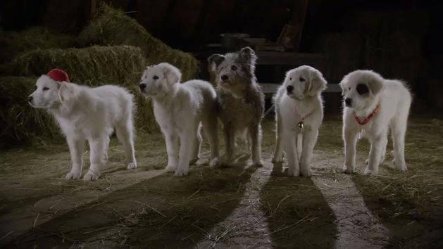 Santa Paws 2: The Santa Pups: Ice Cream