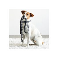 Mickey Mouse Checkered Dog Lead