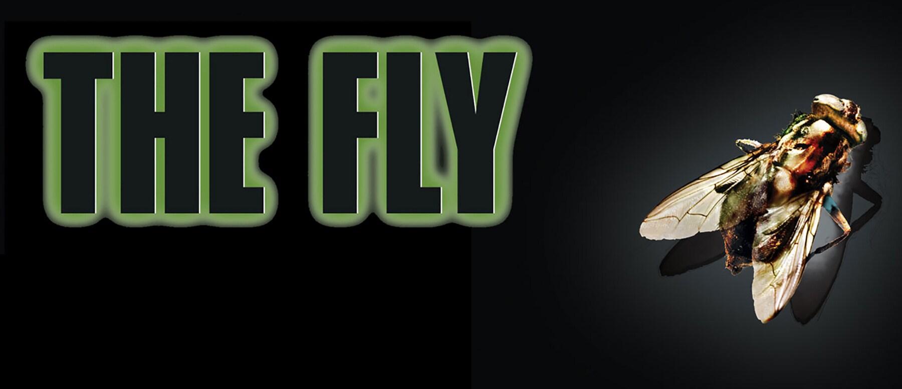 The Fly Hero