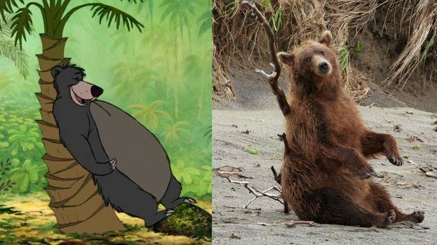 How to Be a Disney Bear - Oh My Disney - Disneynature's Bears