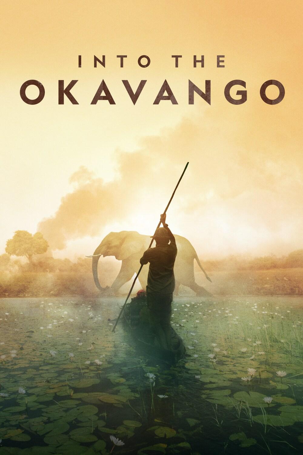 Into the Okavango (2018)