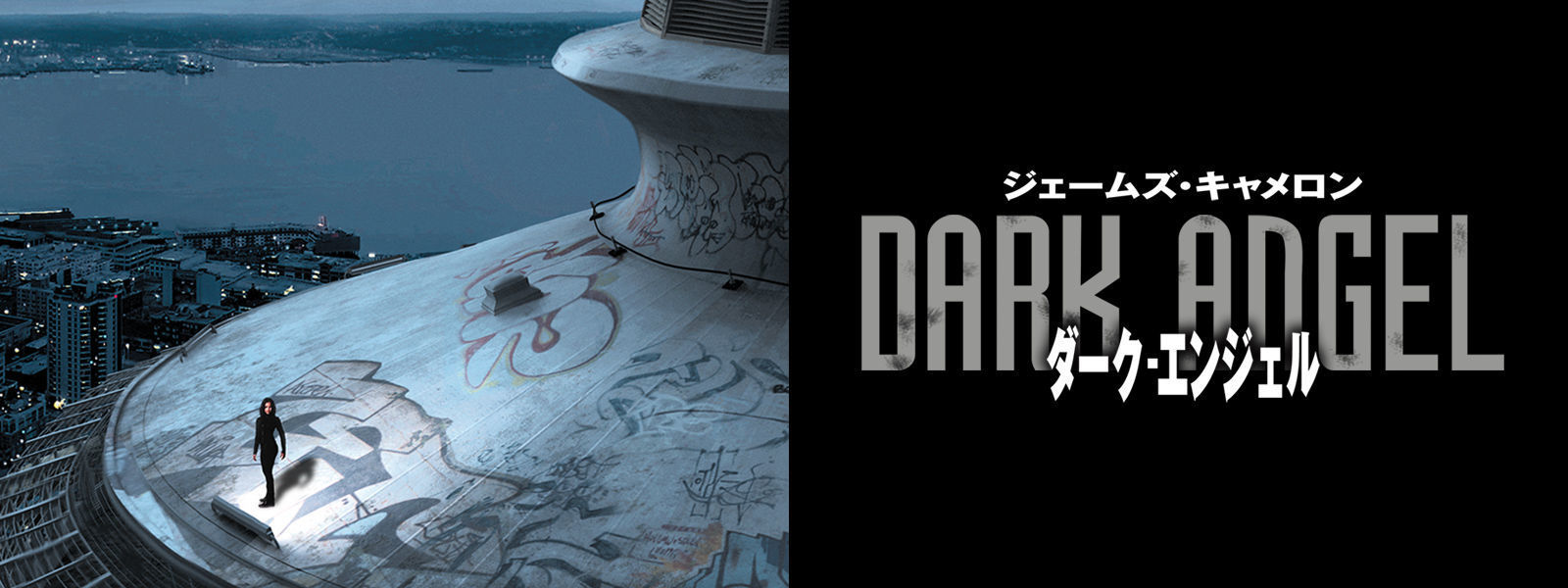 ダーク・エンジェル|Dark Angel Hero Object