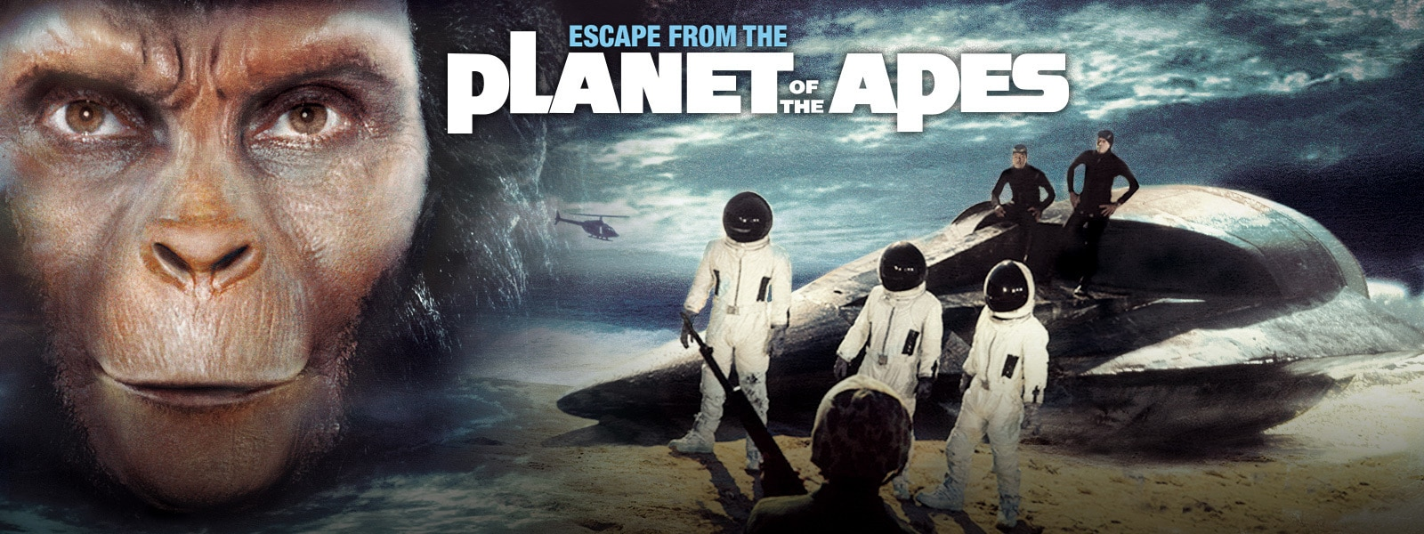 Escape from the Planet of the Apes Hero