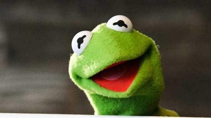 Here's How You Could Win a Karaoke Duet with Kermit the Frog!