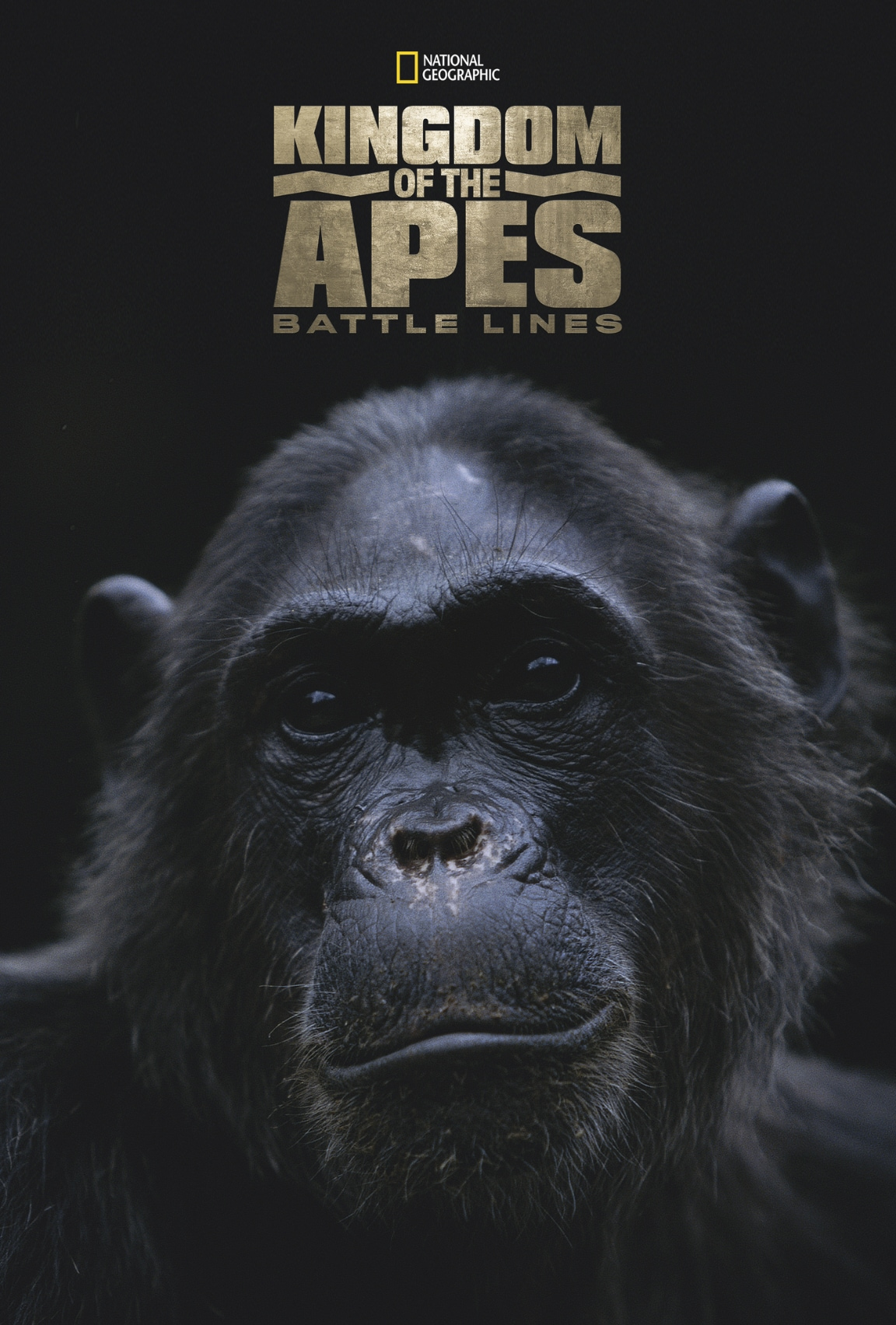 Kingdom of the Apes (2017)