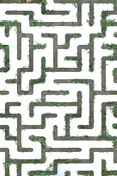 La forêt Labyrinthe