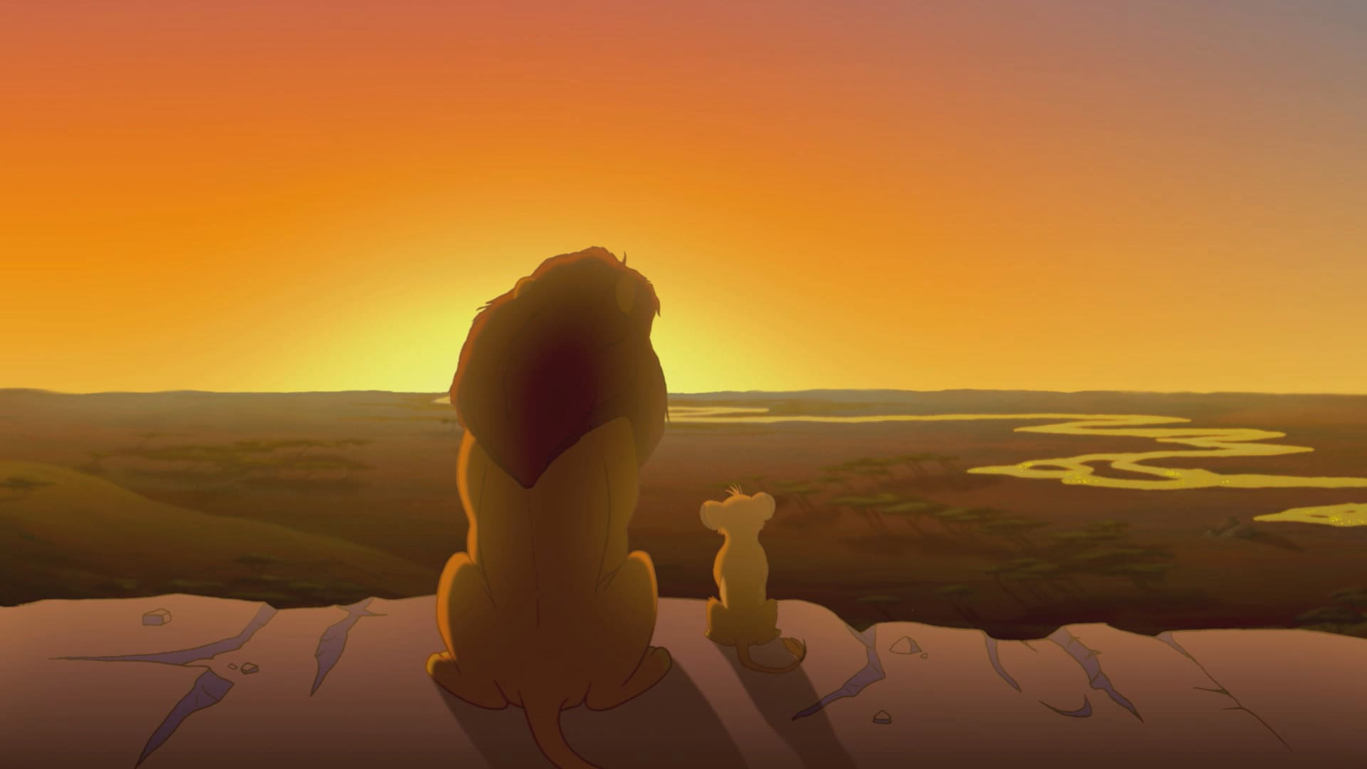 """Zenimation """"Natural Wonders"""" - The Lion King"""
