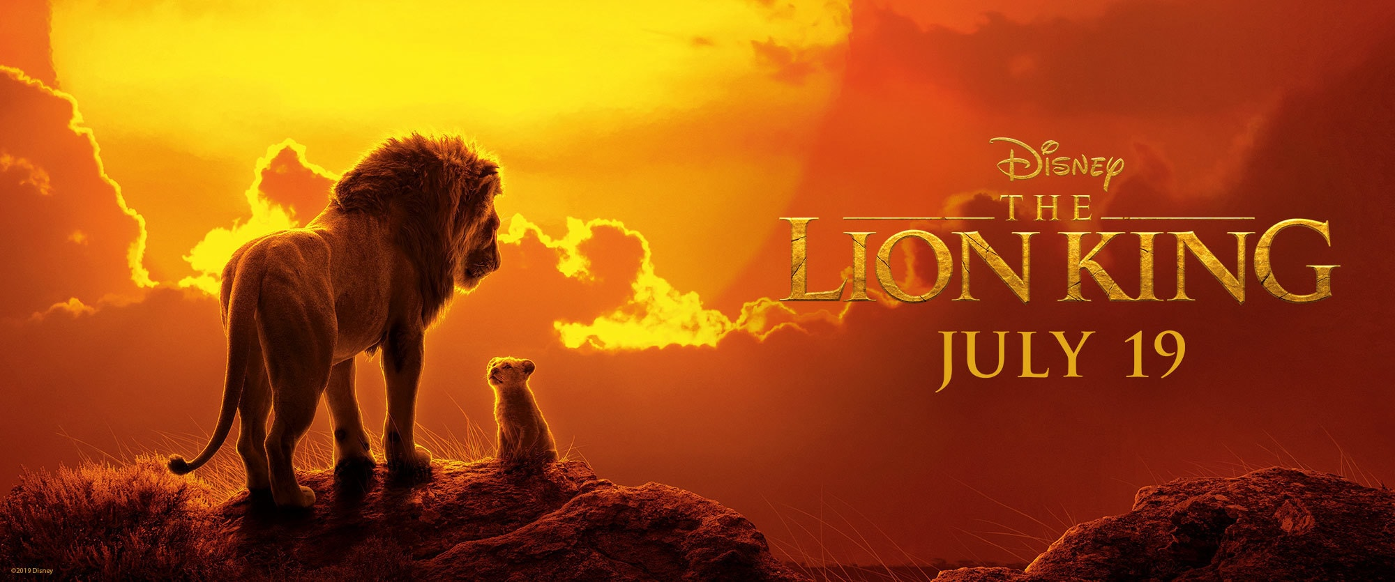 The Lion King_Movie Page_Hero New Banner