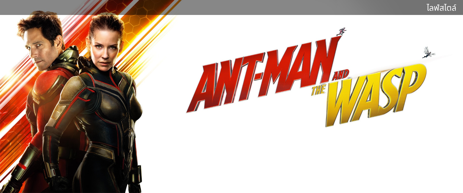 Marvel Studios' Ant-Man and The Wasp | Lifestyle | Homepage | Movies