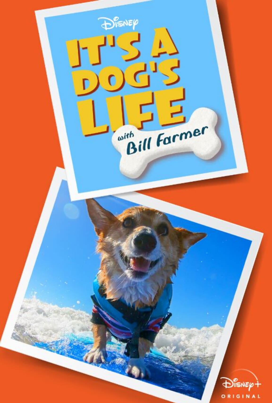 It's A Dog's Life With Bill Farmer (2020)