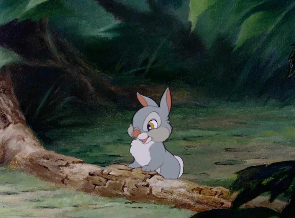 "Animated character Thumper (bunny) from the movie ""Bambi"""