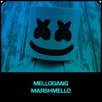 RDMA 2018 Winner - FIERCEST FANS - Mellogang - Marshmello
