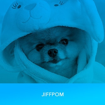 RDMA 2017 Winner - FAVORITE SOCIAL MEDIA STAR - Jiff Pom