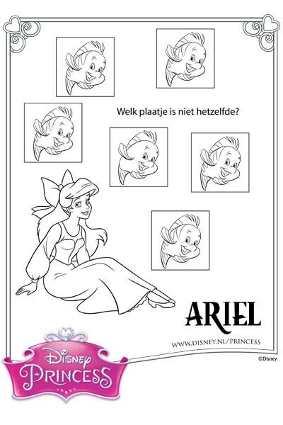 Ariel zoekt de verschillen