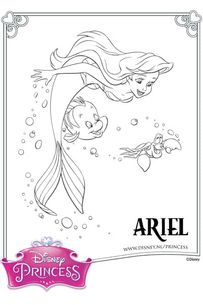 Kleurplaat Ariel, Botje en Sebastiaan
