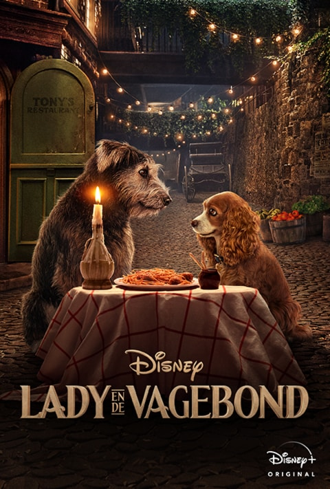 Disney Plus - Lady and The Tramp - Poster - Intro Article