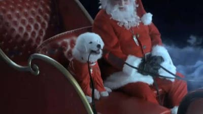 Leo Little's Big Show: The Search for Santa Paws