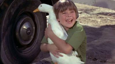 Million Dollar Duck Trailer