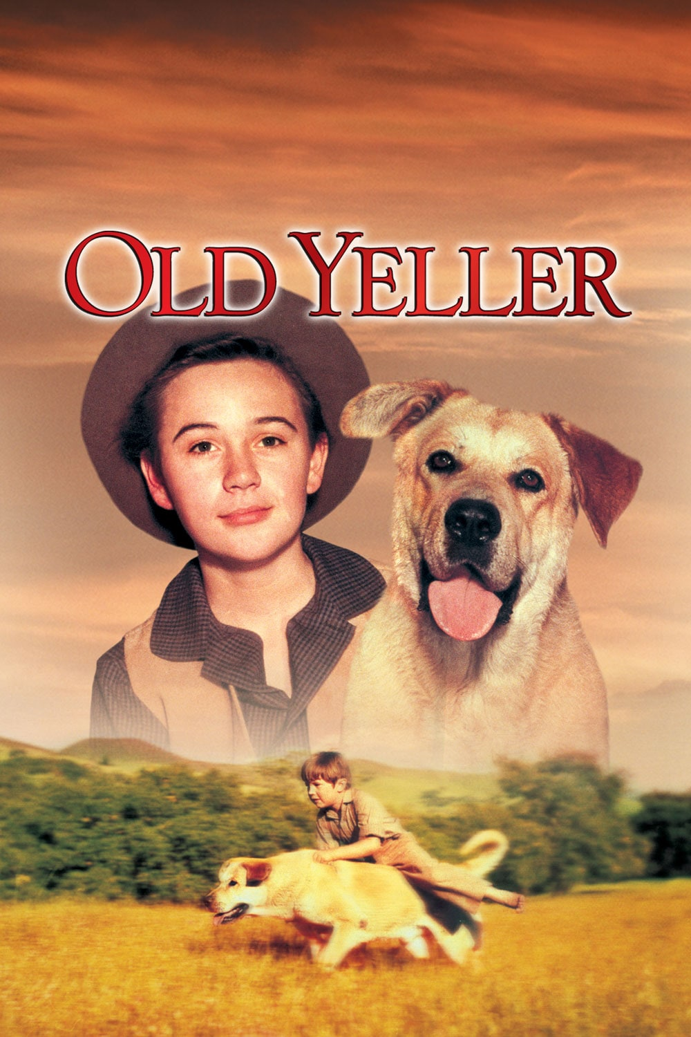 What is the theme of old yeller