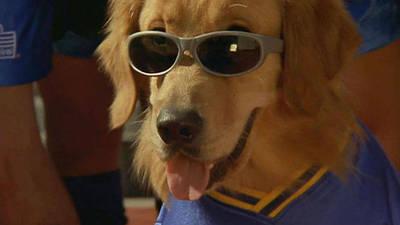 Air Bud - World Pup Trailer