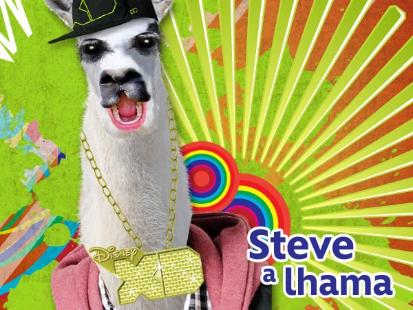 Steve A Lhama