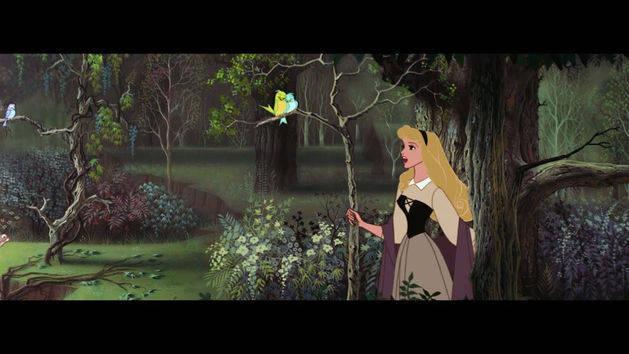 Entonan las aves - La bella durmiente