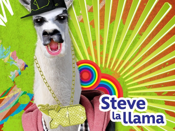 Steve La Llama - Porque sí