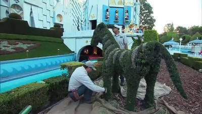 Disneyland Topiaries