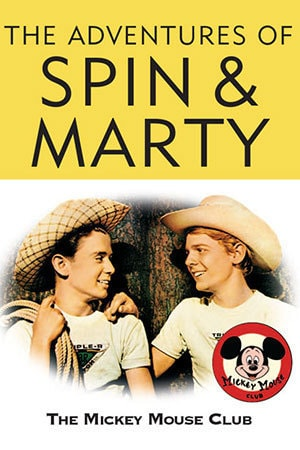 The Adventures Of Spin & Marty poster