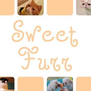 SweetFurr