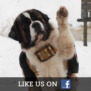 Snow Buddies Facebook