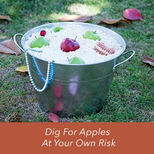 Dig for Apples at Your Own Risk