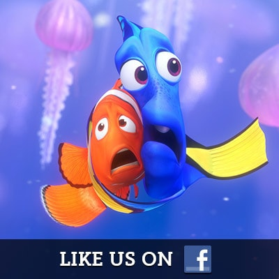 Finding Nemo on Facebook