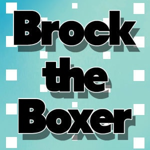 Brock the Boxer